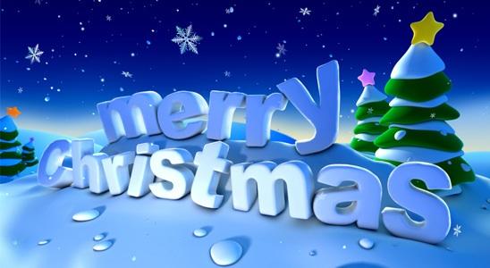 merry_christmas_2008jpg1