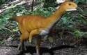 ep chilesaurus el eslabon perdido dedinosaurios