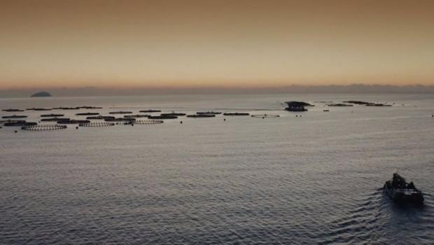 ep archivo   acuicultura de espana